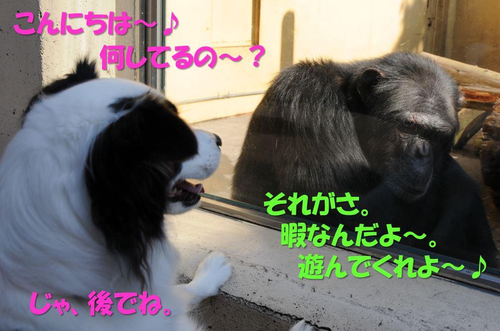 c0147241_17463497.jpg