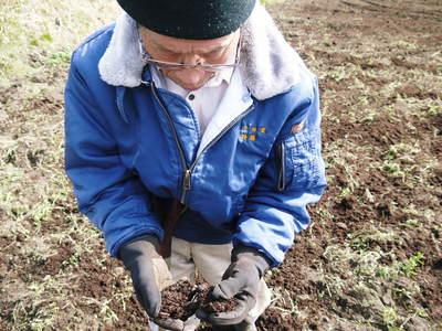 菊池水源里山ニンジン 無農薬・無化学肥料で大事に育てました!!_a0254656_17465466.jpg