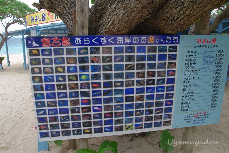 宮古島新城海岸_a0157263_20231202.jpg
