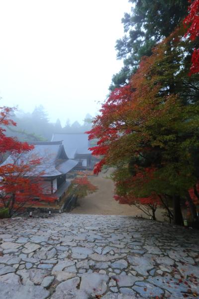 神護寺_e0051888_2154329.jpg