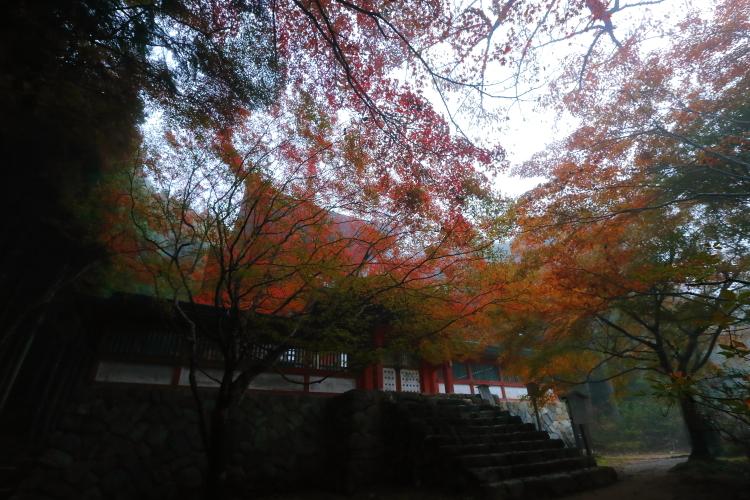 神護寺_e0051888_21545156.jpg