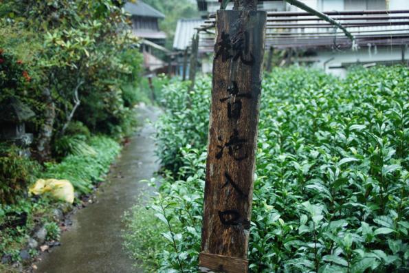 テッラマードレ取材レポート「原嶋製茶園」_f0120395_7115787.jpg