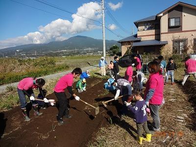 収穫の秋!~芋掘り完了_d0050503_8341567.jpg