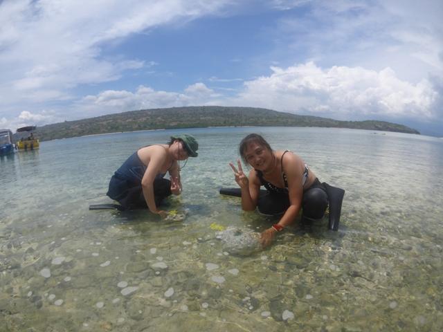 珊瑚の移植をして来ました_c0211615_7411649.jpg