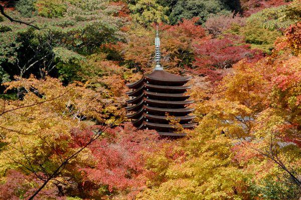 談山神社の紅葉_a0237937_23543012.jpg