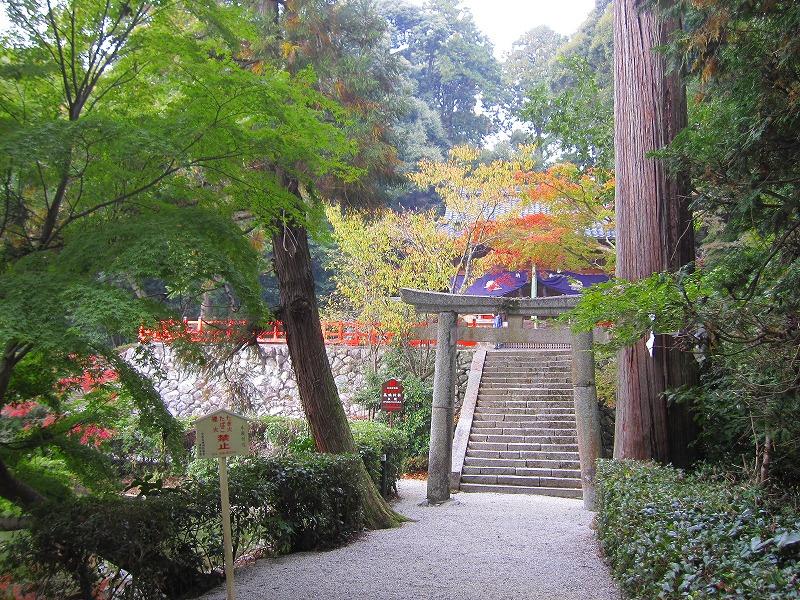 下鴨神社で有名な、鴨社/鴨族のルーツは「奈良県御所市」にあった。_e0237645_20273880.jpg