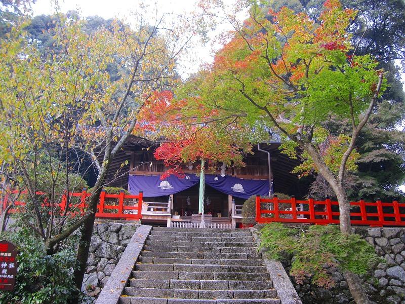 下鴨神社で有名な、鴨社/鴨族のルーツは「奈良県御所市」にあった。_e0237645_20282429.jpg