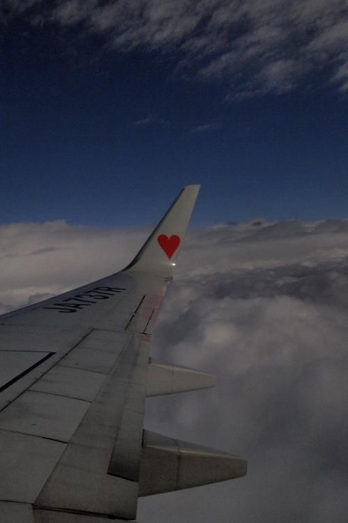 ハートのフライト♡_f0281446_16132660.jpg