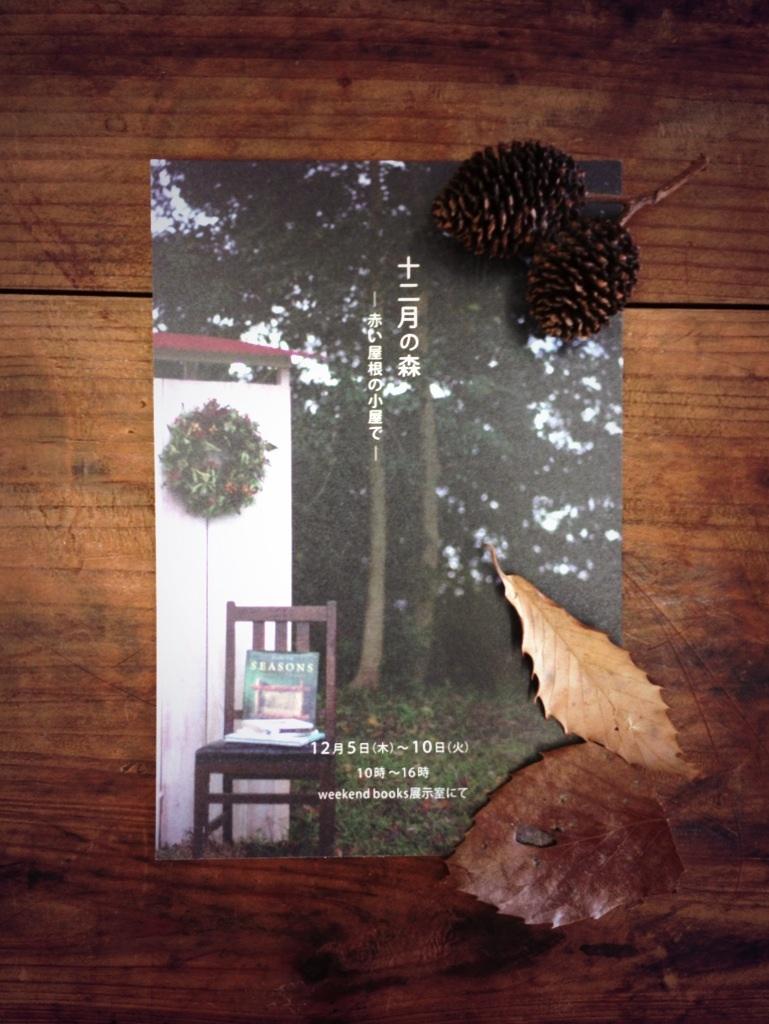 「十二月の森 ―赤い屋根の小屋で―」。_e0060555_295061.jpg