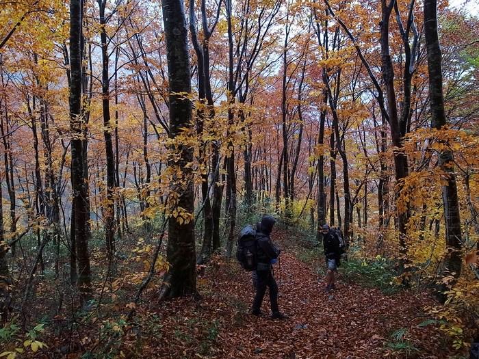 2013.11.3-4 谷川岳を歩いて泊まる山旅 day2_b0219778_1619596.jpg
