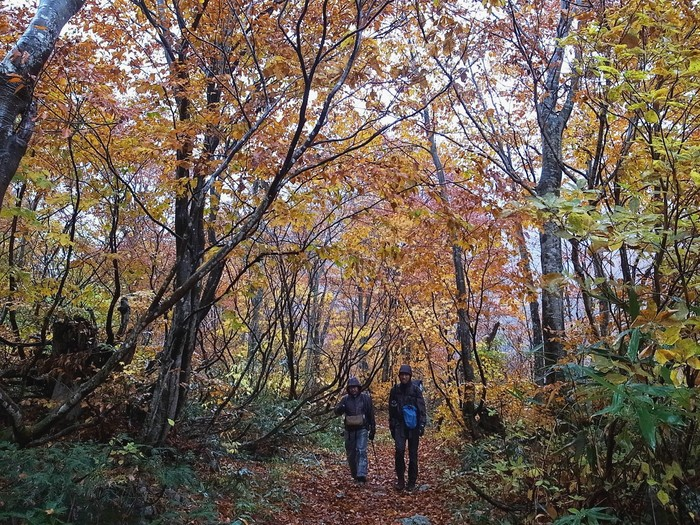 2013.11.3-4 谷川岳を歩いて泊まる山旅 day2_b0219778_16202762.jpg