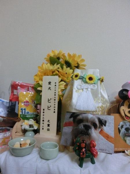 大阪に着きました。_a0199979_163288.jpg