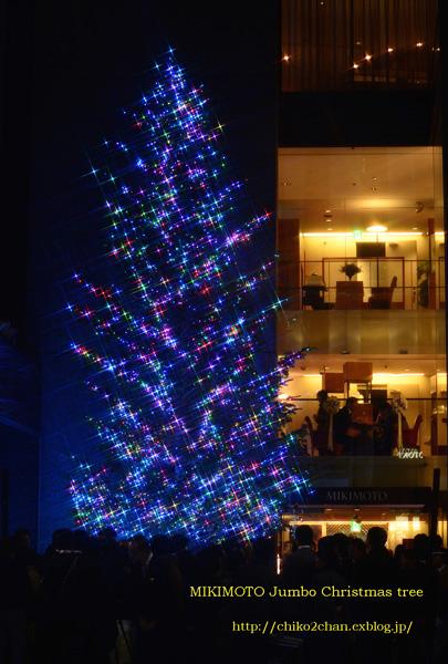 MIKIMOTO Jumbo Christmas tree~☆_e0221779_1423196.jpg