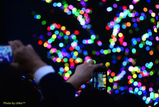 MIKIMOTO Jumbo Christmas tree~☆_e0221779_14263925.jpg