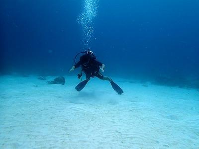 海洋実習@ラチャヤイ_f0144385_1743569.jpg