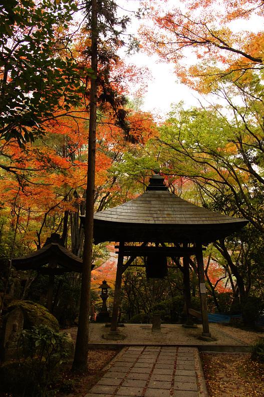 三滝寺の紅葉 again:20131117_f0189086_2025345.jpg