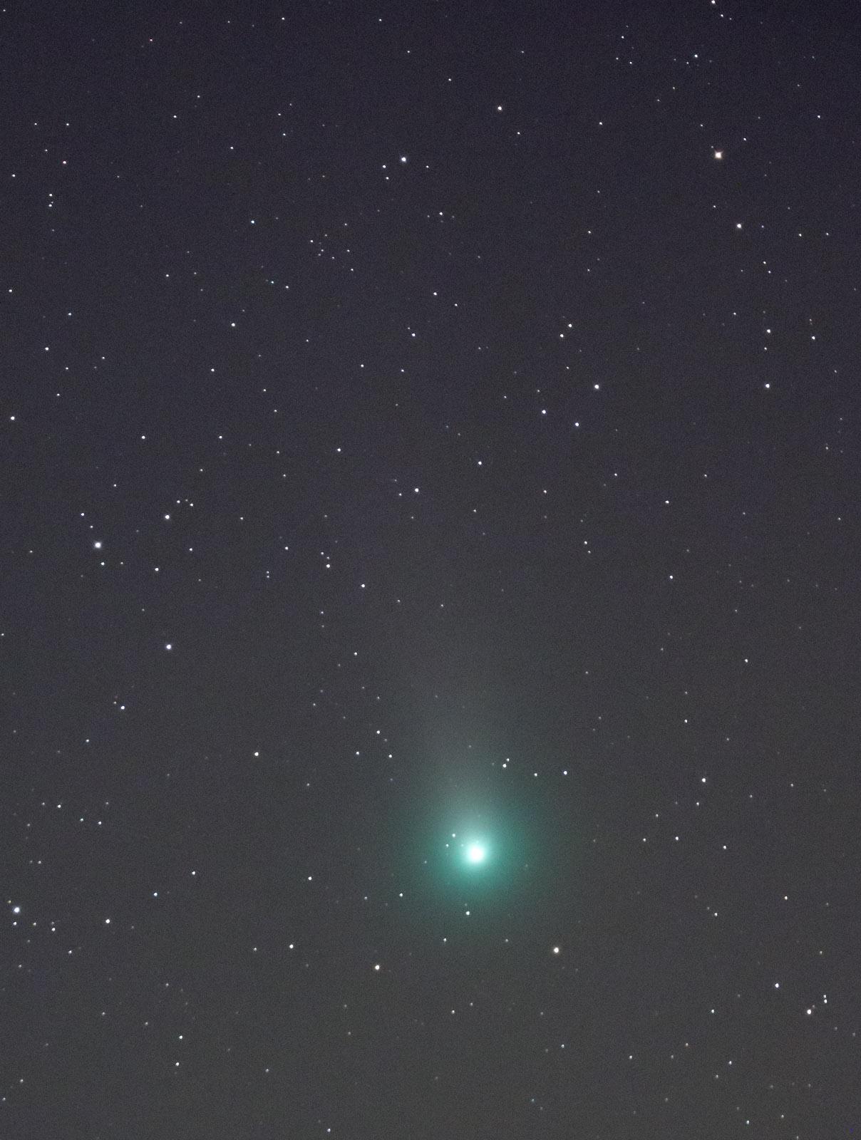11月14日早朝のアイソン彗星とラブジョイ彗星_e0174091_13430662.jpg