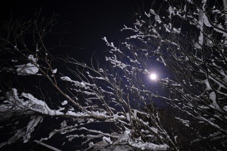 月夜の夜_e0120896_06362530.jpg