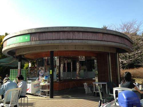 東京都内天サロスポット木場公園の売店