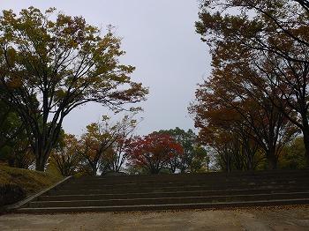 秋の一日_e0221708_2054233.jpg