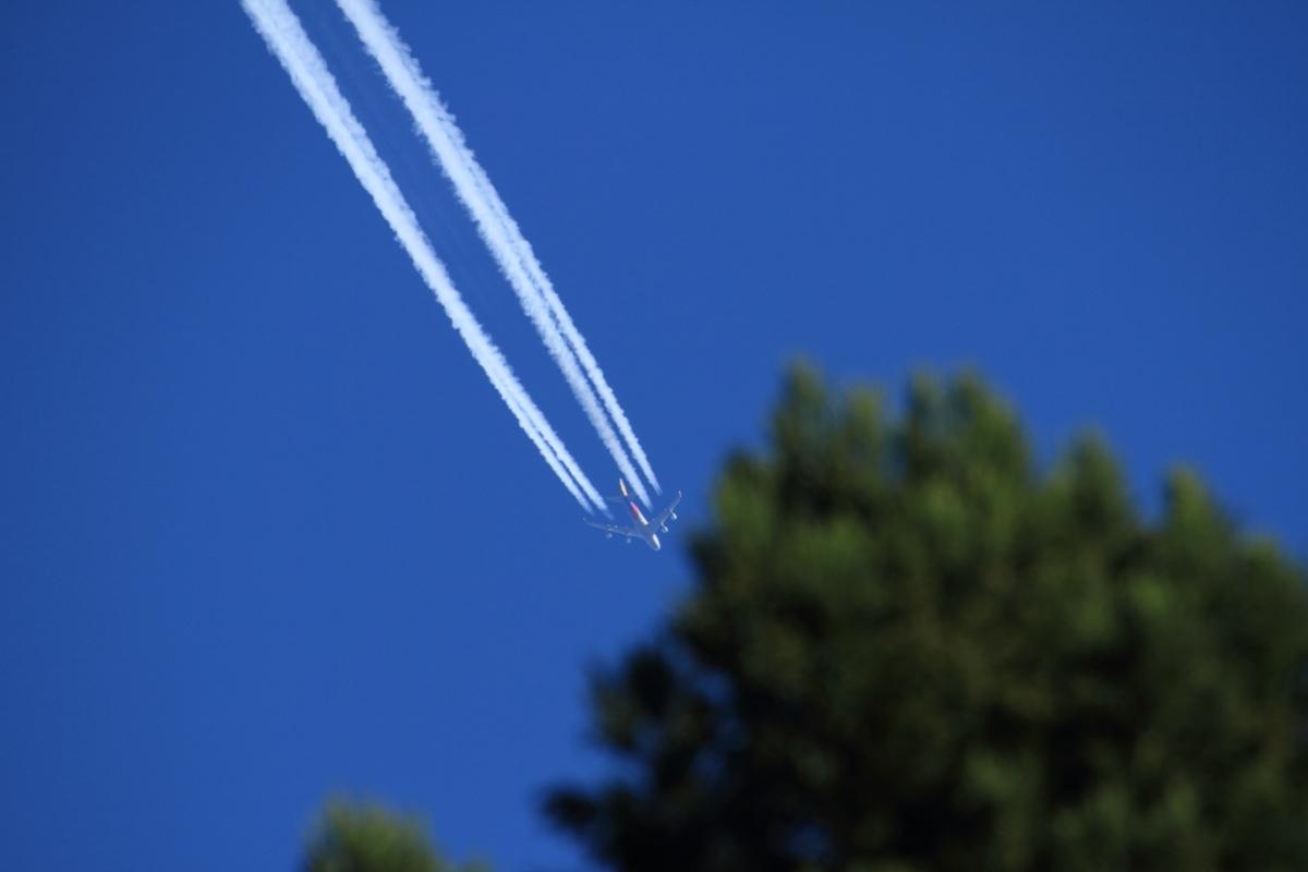 上空11,000mから謎のメッセージ_a0203733_14223984.jpg