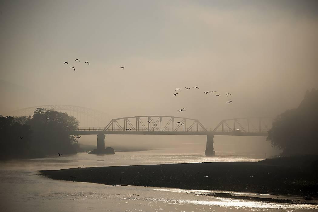 朝霧の始まり(2)_e0271864_23103826.jpg