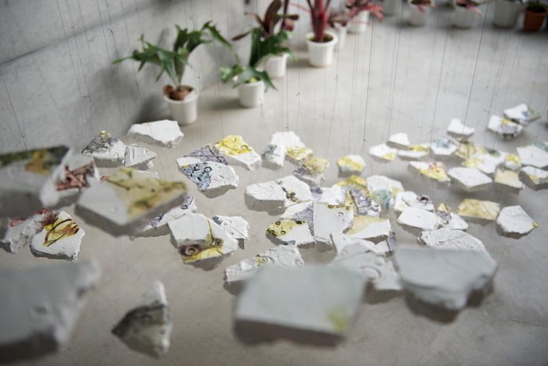 乙庭ギャラリー 生物図鑑15 大和由佳 「杖先、新しい小径」展 展覧会記録_f0191870_14491287.jpg