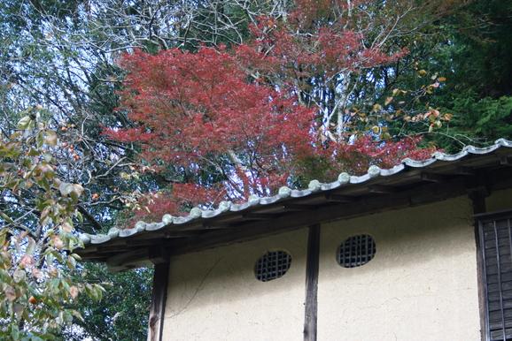 「田舎で暮らす・スローハウス」11月11日_e0215179_11454313.jpg