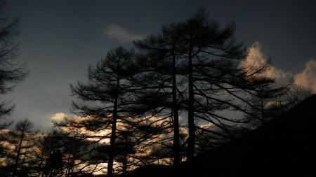 初冬の夕暮れ_e0120896_06323448.jpg