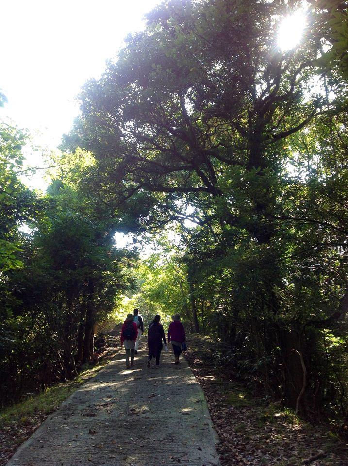 文珠山清滝観音〜日本最大のペトログラフへ_f0071303_20171240.jpg