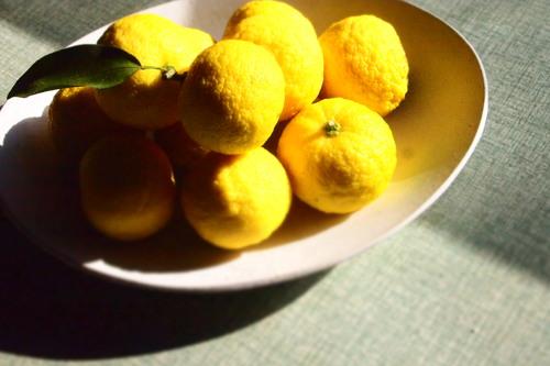 冬の柑橘色_c0148232_91149.jpg