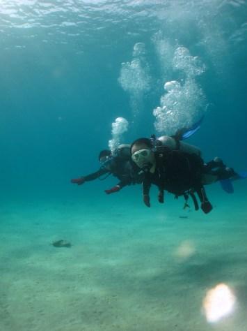 11月19日北部遠征体験ダイビング!!_c0070933_20100184.jpg