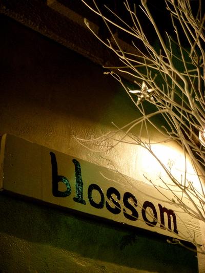 blossom..._a0229658_2240368.jpg