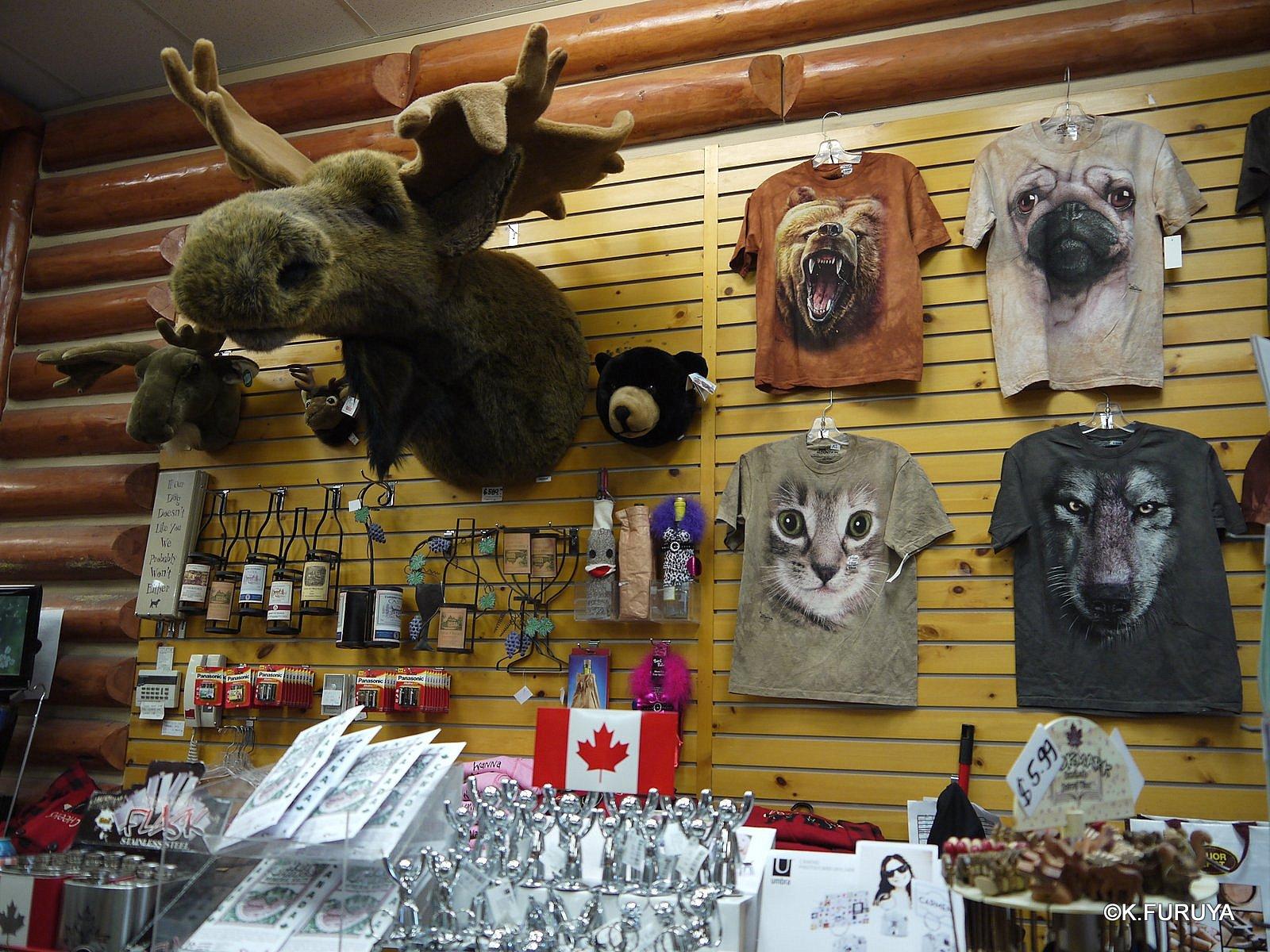 カナダ旅行記 17 バンフへ_a0092659_22101871.jpg