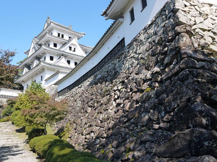 念願だった郡上八幡町へ:団塊サミットin Gifu 2013②_c0014967_8494728.jpg