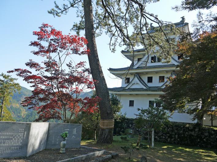 念願だった郡上八幡町へ:団塊サミットin Gifu 2013②_c0014967_925912.jpg
