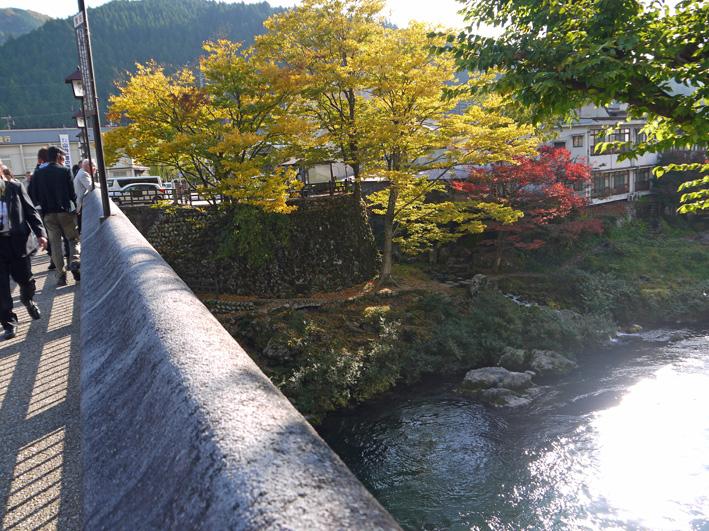 念願だった郡上八幡町へ:団塊サミットin Gifu 2013②_c0014967_975361.jpg