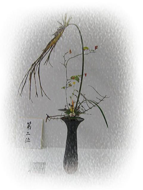 七夕花展 コンクール編_b0189573_13332625.jpg