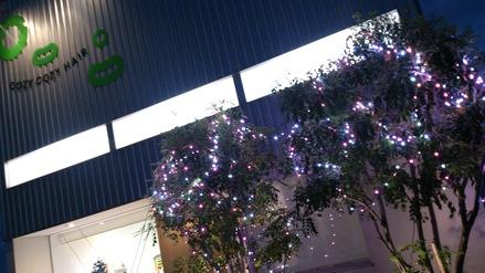 クリスマス装飾_f0172281_13372635.jpg