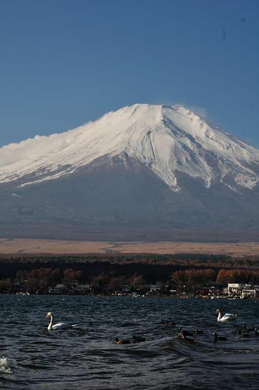 山中湖からの富士_f0202686_20472464.jpg