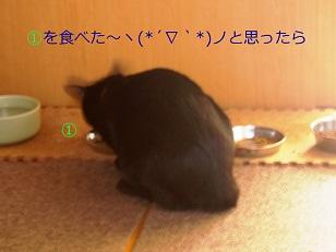 b0200310_1848521.jpg