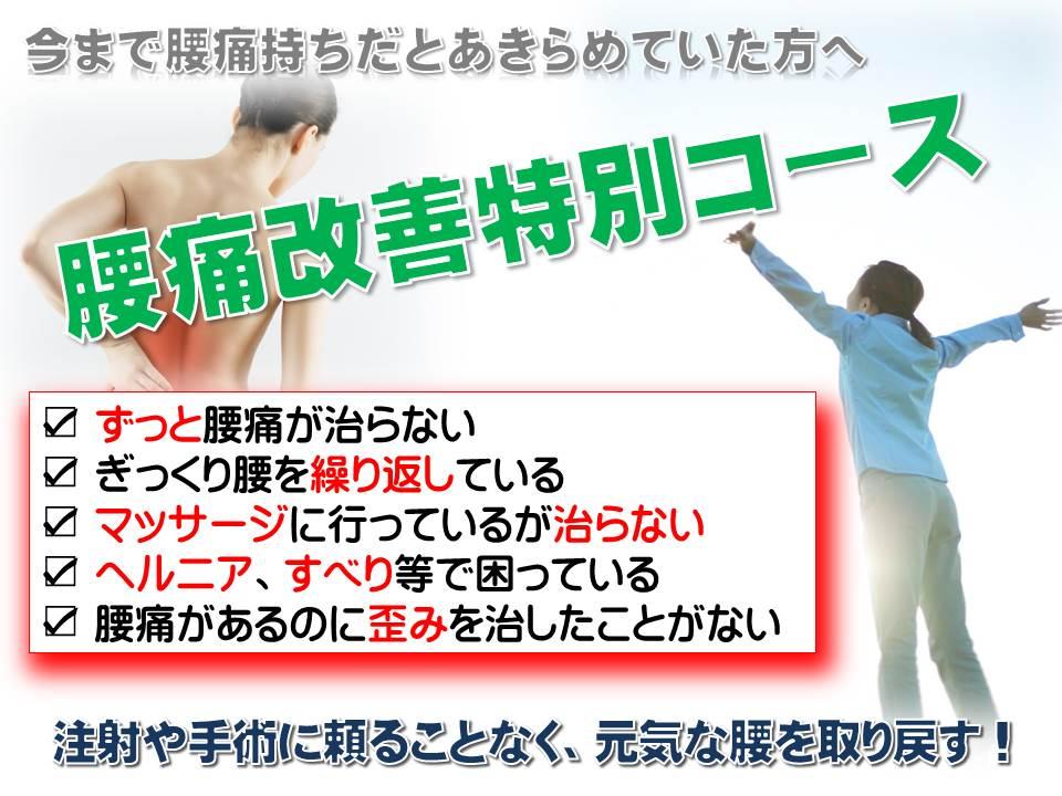 33歳女性 急性腰痛_a0070928_22425153.jpg