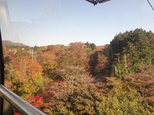 ~社員旅行 in 箱根 三日目 ~_f0110349_20253275.jpg
