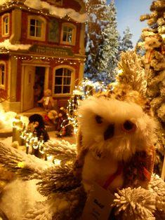 Der Winter steht vor der Tür._e0116763_18103183.jpg