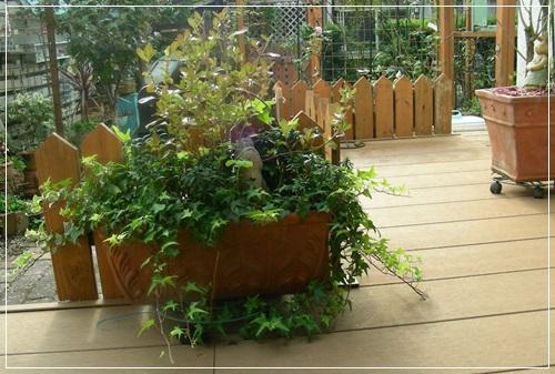 庭の様子・・・_b0096584_22334144.jpg