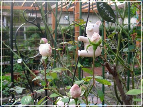 庭の様子・・・_b0096584_22335743.jpg