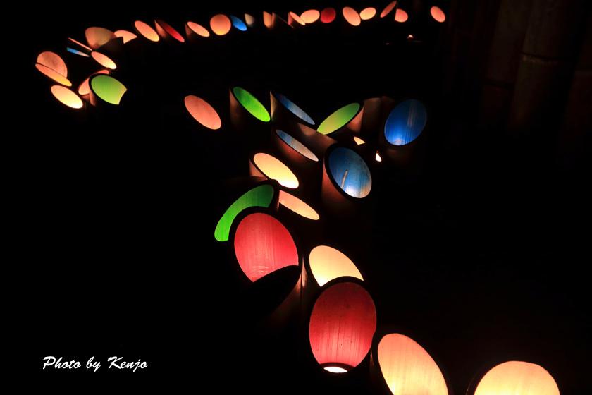 ミリカの竹灯篭。。_a0097006_2204332.jpg