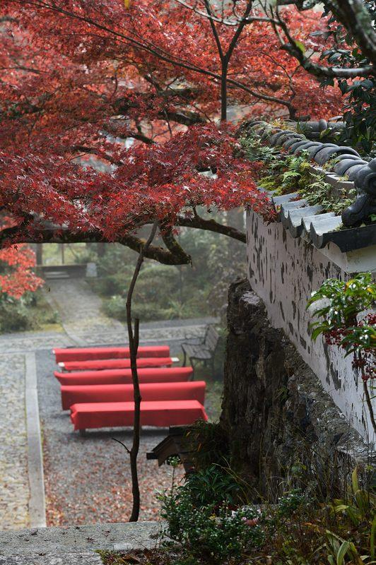 2013京都の紅葉!・神蔵寺 其の二_f0032011_19345451.jpg
