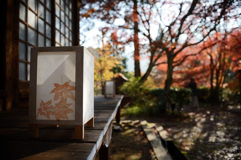 2013京都の紅葉!・神蔵寺 其の二_f0032011_19392978.jpg