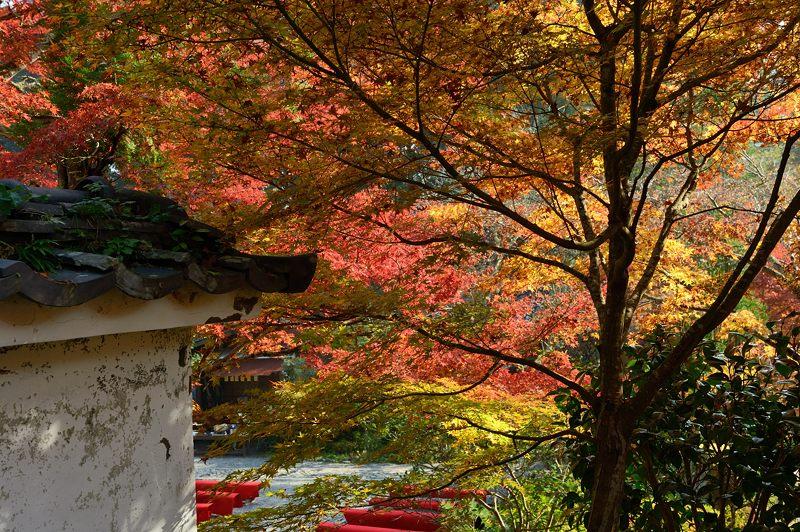 2013京都の紅葉!・神蔵寺 其の二_f0032011_19395642.jpg